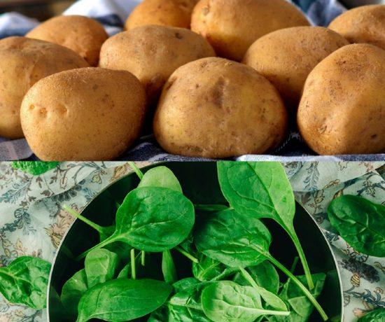 Kartoffeln, Spinat, Rezepte, Spinat Lachs, Spinat Rezept, Kartoffeln mit, Kartoffeln kochen, gesünder essen für kinder, schnelles essen für kinder, gesundes essen für kinder