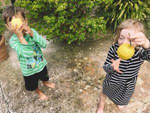 Kinder pflücken Zitronen